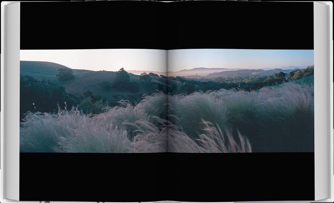 dea-flora-spread-10