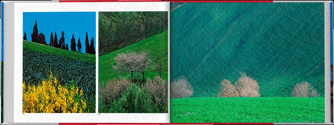 invito-bologna-spread-06