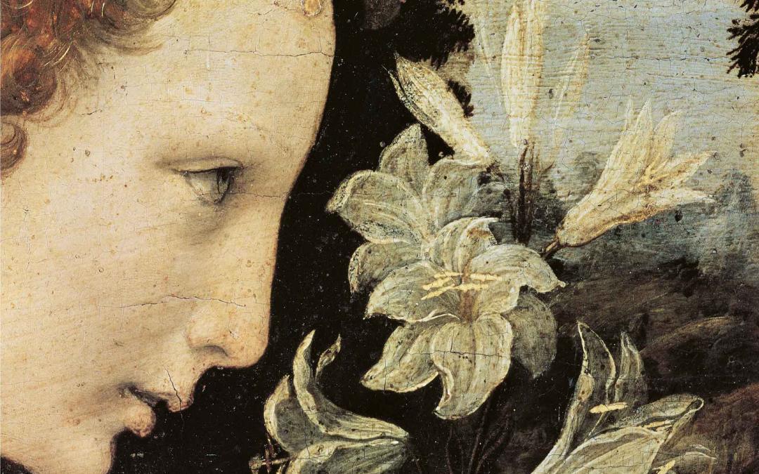 Leonardo Infinito