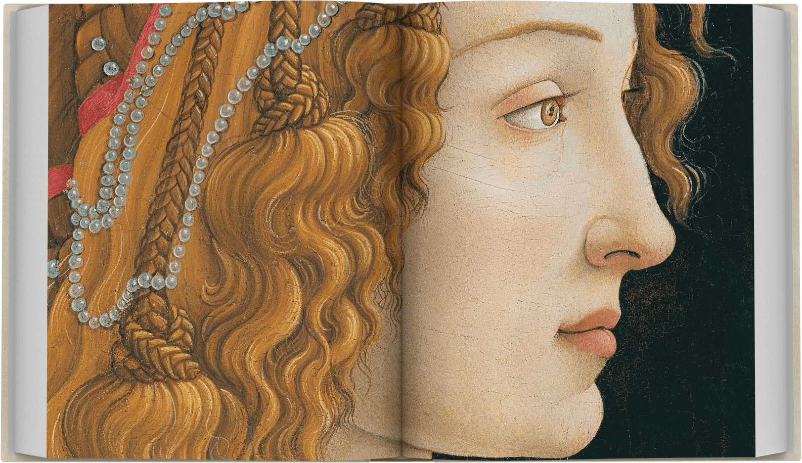 botticelli-limited-spread-1