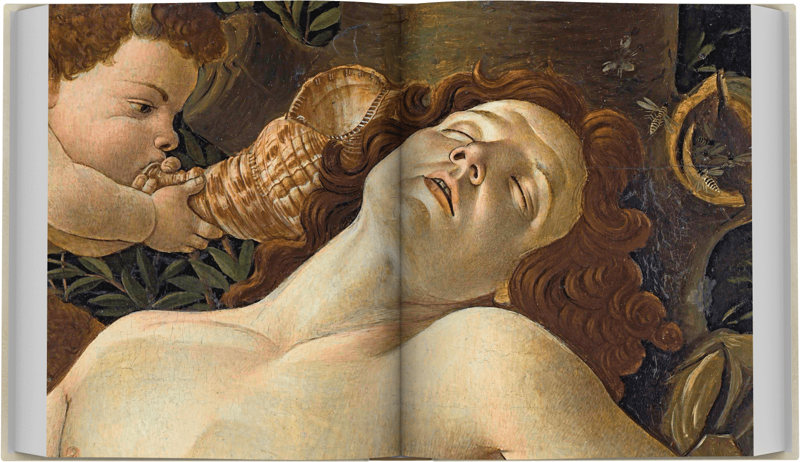 botticelli-limited-spread-6